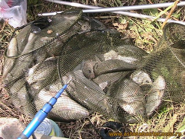 когда первая рыбалка на карася